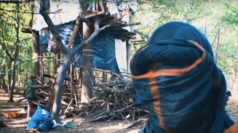 Aktivisten gegen RWE: Polizei geht gegen Waldbesetzer vom Hambacher Forst vor (Video)
