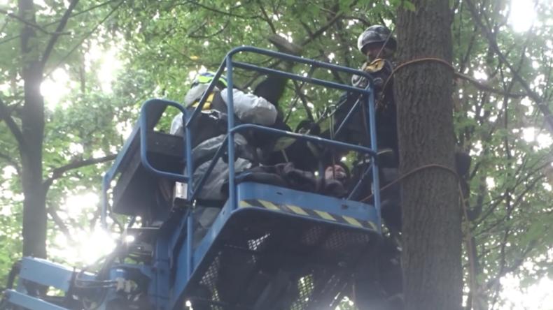 Räumung im Hambacher Forst – Aufnahmen zeigen Festnahmen von Baumaktivisten