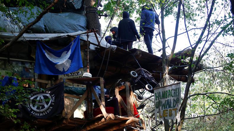 Mehrere Verletzte und zahlreiche Festnahmen im Hambacher Forst