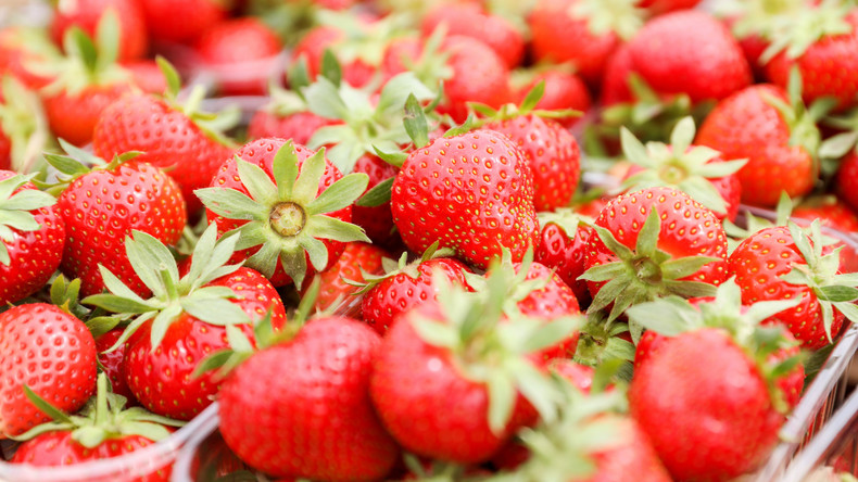 Gefährliche Früchte: Australische Polizei nimmt Verdächtigen wegen Nadeln in Erdbeeren fest