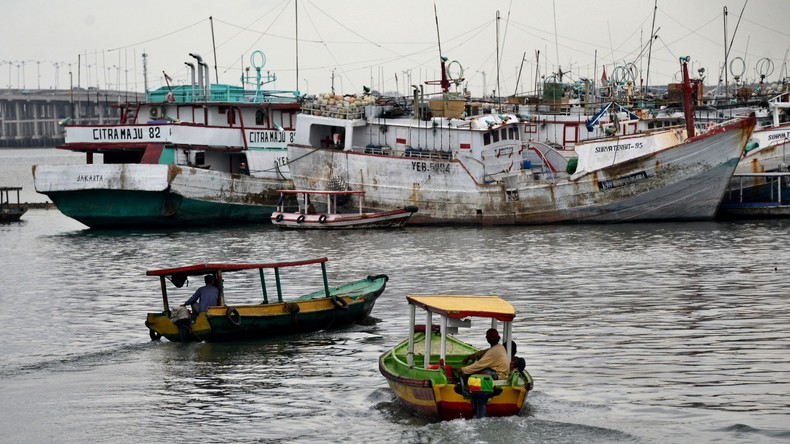Life of Aldi: Indonesischer Teenager treibt 49 Tage lang auf dem Meer und überlebt