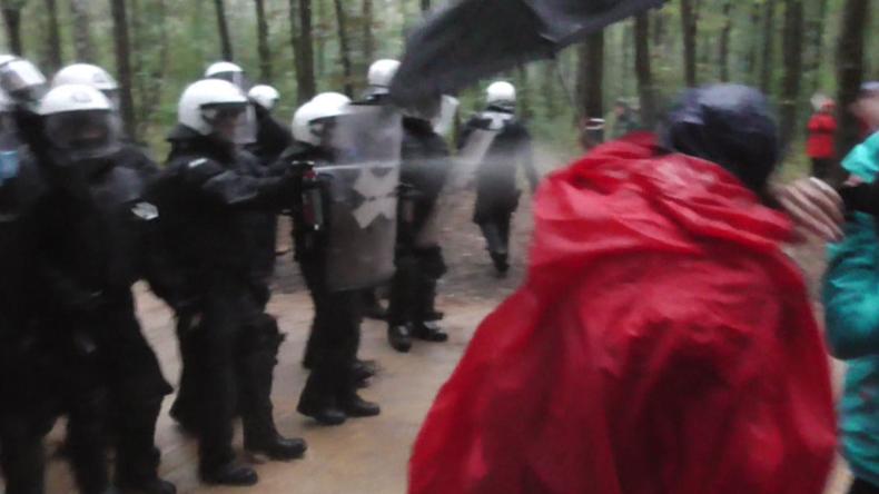 Hambacher Forst: Tausende Protestierende stellen sich gegen Rodung und Polizei
