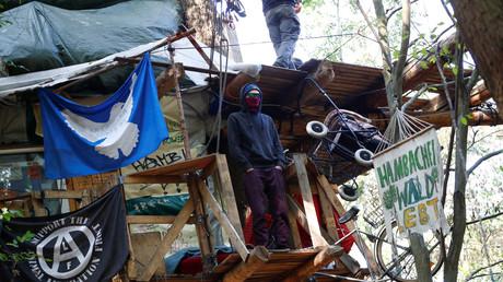 Umweltaktivisten auf einem Baumhaus im