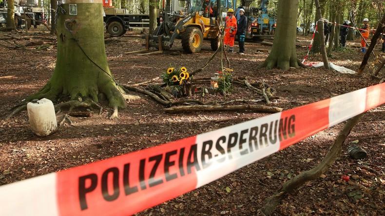 Räumung im Hambacher Forst geht weiter – Gegner demonstrieren friedlich
