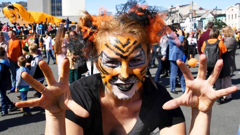 Orange und gestreift: Internationaler Tiger-Tag in Wladiwostok