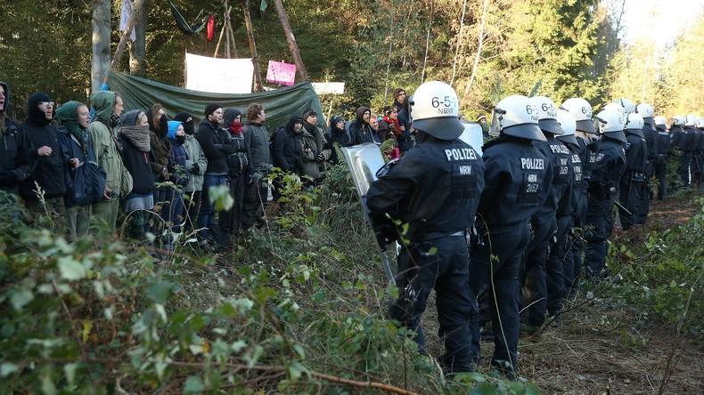 Baumhäuser im Hambacher Forst geräumt – RWE bereitet Rodung vor