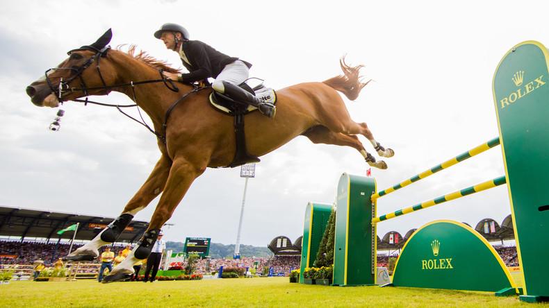 ´ne Tafel Rittersport, bitte: Pferd entkommt Reiter und besucht eine französische Bar