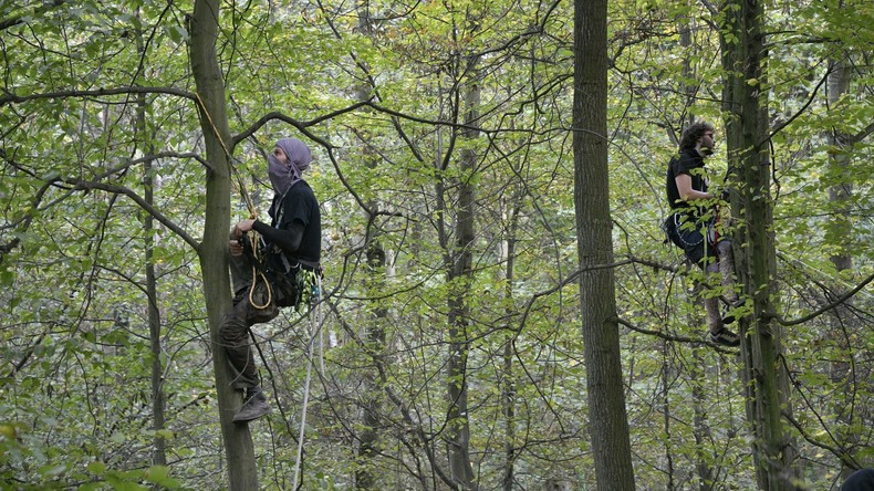 Aktivisten bauen im Hambacher Forst neue Baumhäuser