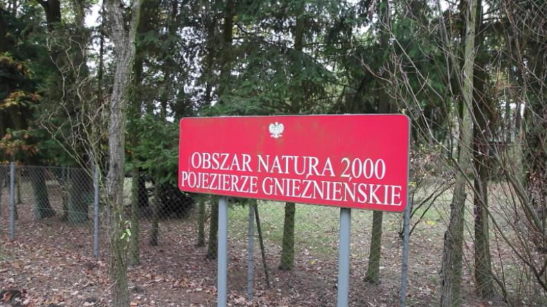 """Polen: """"Ist gegen Russland und somit ok"""" – EU-geschützter Wald soll für US-Militär abgeholzt werden"""