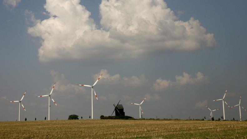 Roden für die Energiewende - Grüne stellen in Hessen Windräder in Naturpark