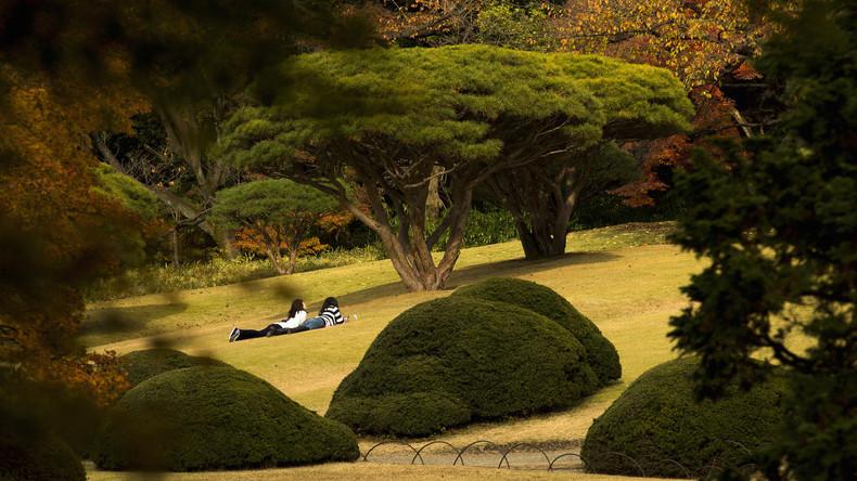 Parkwächter lässt tausende Touristen kostenlos in japanischen Park – aus Scheu, sie anzusprechen