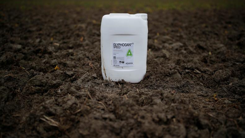 Streit um Glyphosat-Ausstieg:Umweltministerin Schulze legt eigenen Plan vor