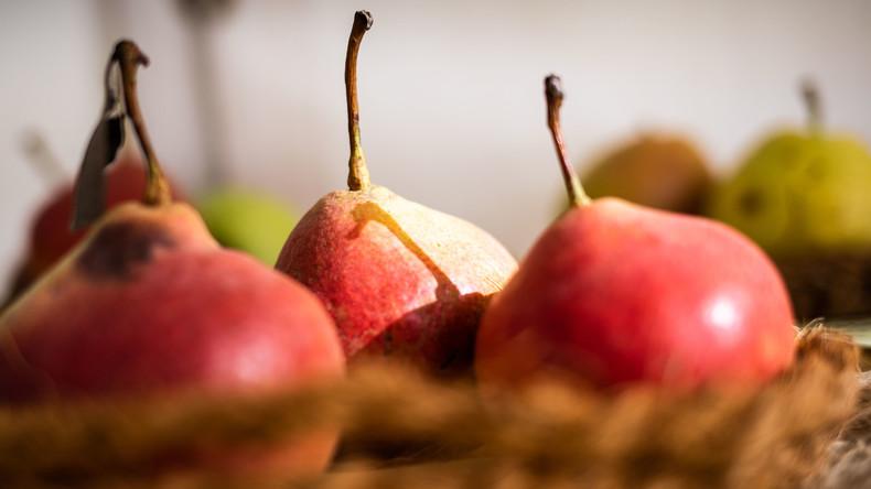 """Australischer """"Nadel-Alptraum"""" geht weiter – jetzt sogar Birnen betroffen"""