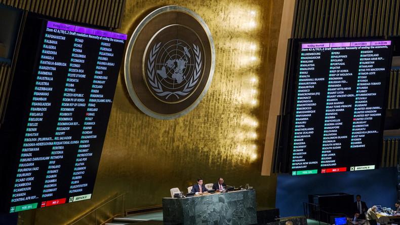 Die UNO, US-Blockaden und Belege für deutsche Lückenpresse