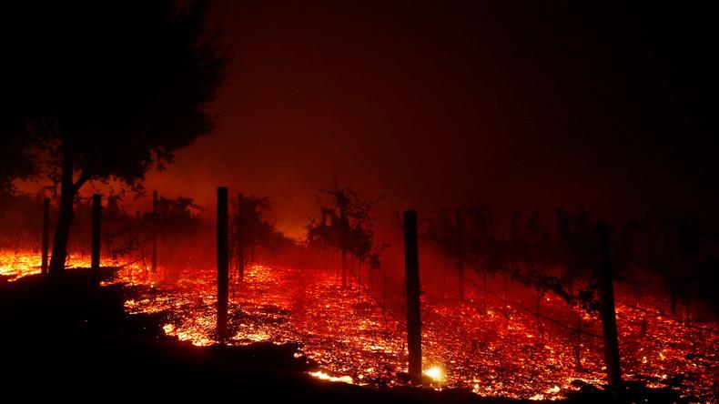 """Waldbrand in Kalifornien: Freisetzung """"hoch gefährlicher"""" radioaktiver Partikel auf Atomtestgelände"""