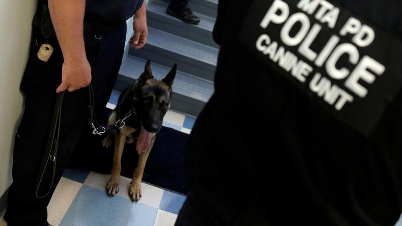 Alle Hunde kommen in den Himmel: US-Polizisten veranstalten Gedenkgottesdienst für K-9-Offizier