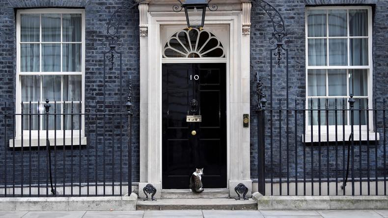 Lasst den Kater herein! Polizist klopft bei Downing Street 10 an, damit Mäusejäger nach Hause kann
