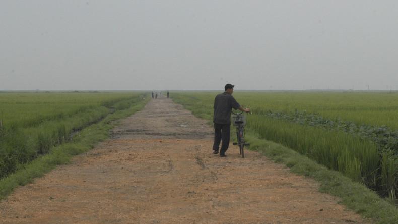 Drei Kilometer näher zusammen: Nord- und Südkorea verbinden Straße in demilitarisierter Zone