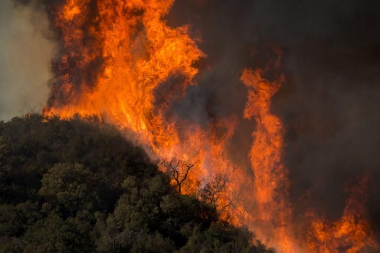 Weitere Tote durch Waldbrände in Kalifornien – Behörden verlängern Notstand
