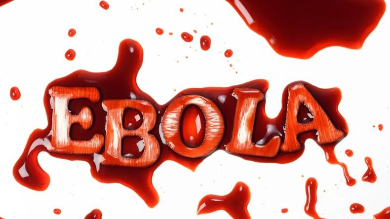 Inzwischen 500 Fälle des gefährlichen Ebola-Virus im Kongo