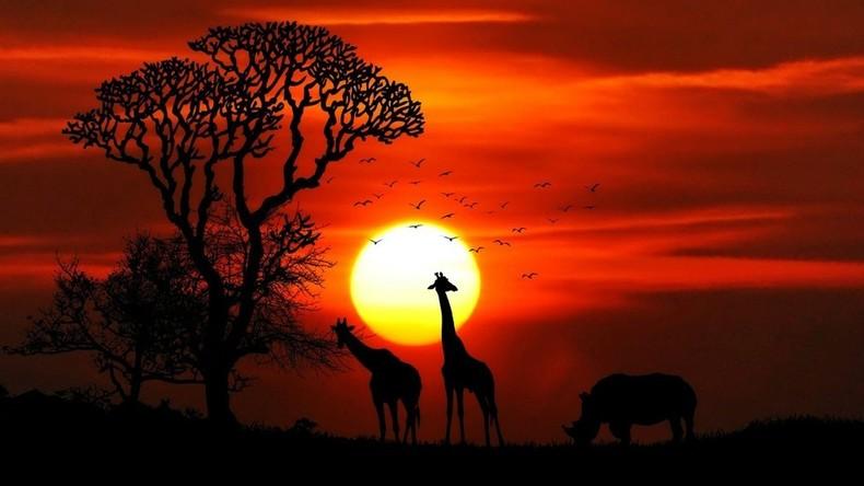 AfCFTA-Abkommen ratifiziert: Afrika wird bald größte Freihandelszone der Welt
