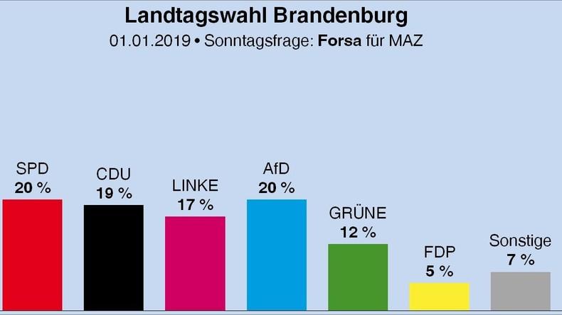 Brandenburg: AfD in Umfrage gleichauf mit Spitzenreiter SPD