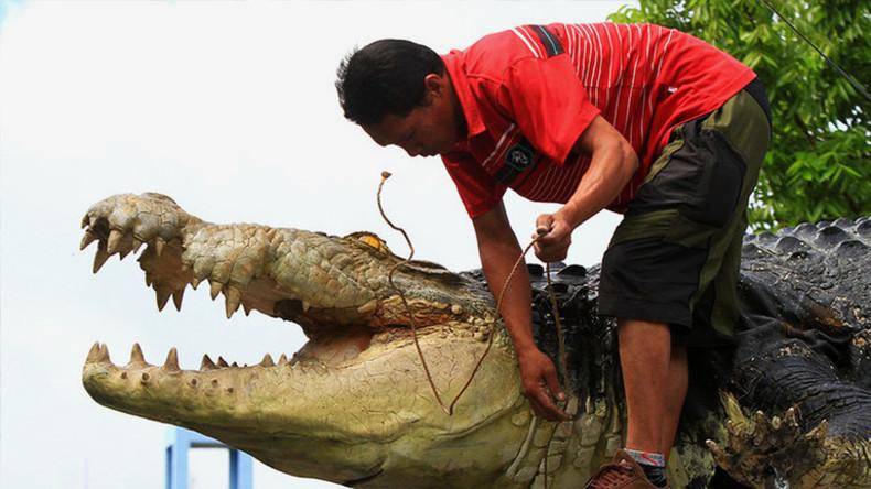 Fünf Meter langes Krokodil springt aus Gehege und frisst Frau bei lebendigem Leib
