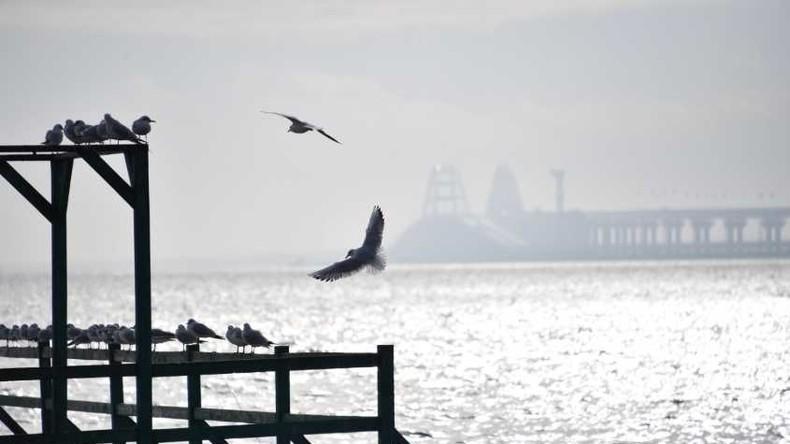 Kertsch-Vorfall: Deutschland will Beobachter ans Asowsche Meer schicken