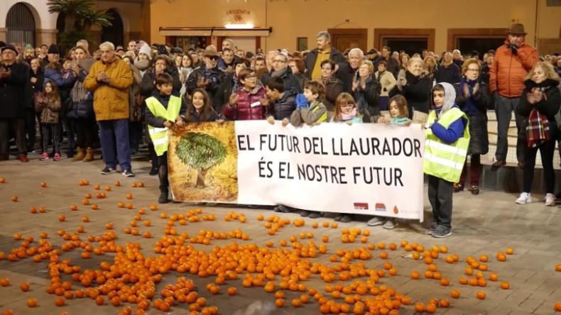 Das Kilo Orangen für 9 Cent: Landwirt-Proteste in Spanien gegen Preisverfall nach EU-Südafrika-Deal