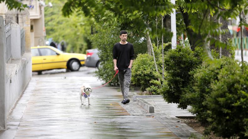 Teheran verbietet Gassi gehen mit Hunden an öffentlichen Plätzen
