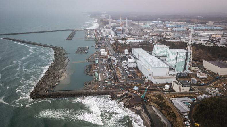 Fukushima: Erste Untersuchung des Kernbrennstoffes am havarierten Kraftwerk