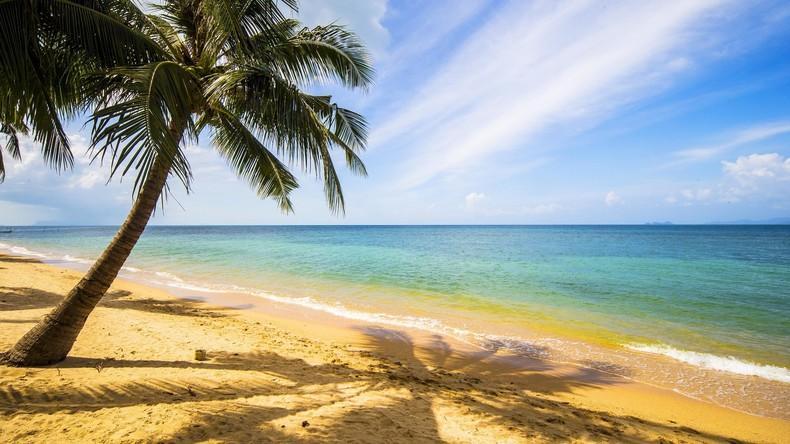 Pottwal-Exkremente für 500.000 US-Dollar: Mann findet Ambra-Klumpen an Strand in Thailand