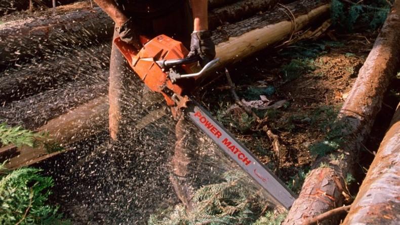 Mann zersägt sich bei Holzarbeiten Gesicht und bringt sich selbst ins Krankenhaus