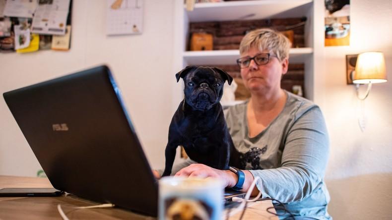 Mops gepfändet und über Ebay verkauft: Gutachten entlastet Stadtverwaltung, aber neuer Ärger droht