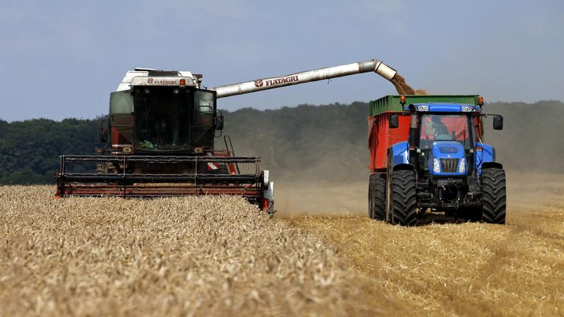 Weltweite Getreideernte deckt Verbrauch nicht