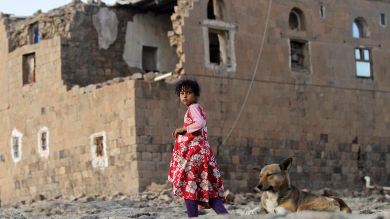 Leak: Französische Panzer und Haubitzenkanonen werden im Jemen-Krieg eingesetzt