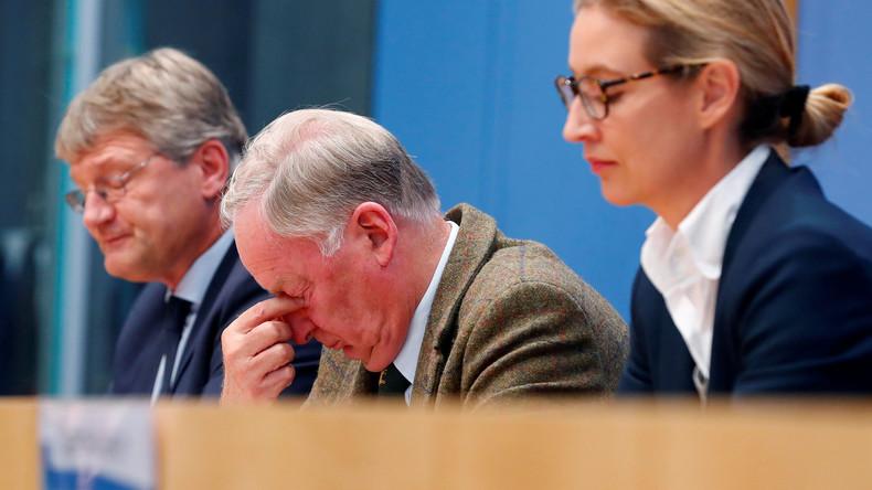 Wegen illegaler Spenden: AfD muss 402.900 Euro Strafe zahlen