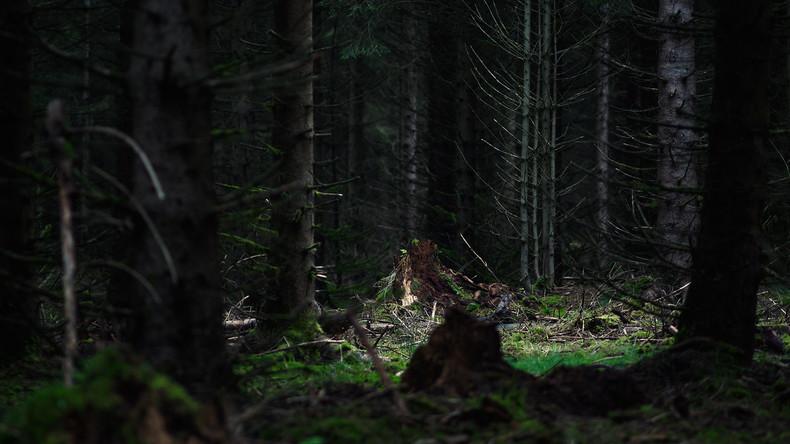 Mutmaßlicher Houdini-Nachahmer im Wald bei Moskau tot entdeckt – Skelett an Baum angekettet