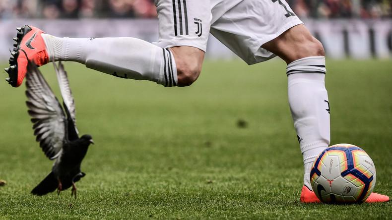 Treffer in luftiger Höhe: Fußball erwischt Vogel über Stadion – Taube fliegt nach Aufprall weiter