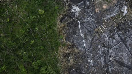 Ein Teil des Amazonas-Regenwaldes, der abgeholzt und verbrannt wurde, neben einem intakten Teil des Urwaldes im brasilianischen Bundesstaat Para am 29. September 2013