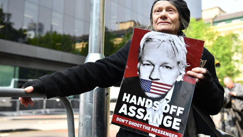 Julian Assange zu 50 Wochen Gefängnis verurteilt