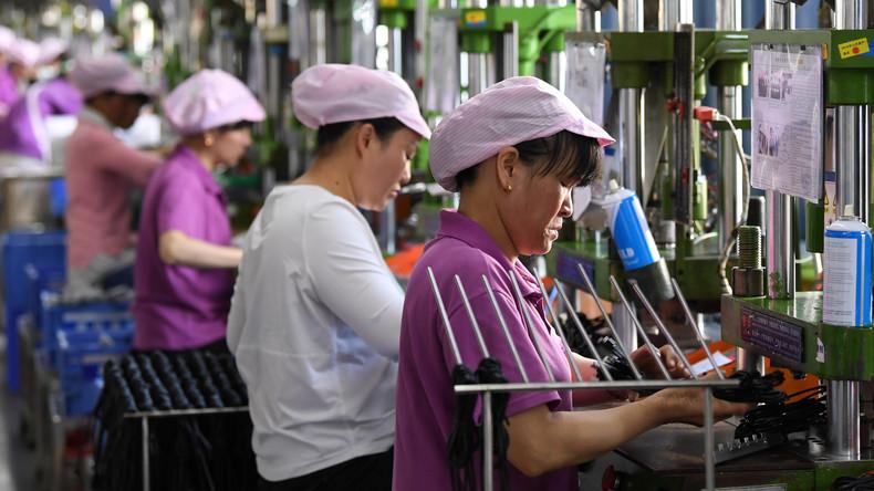 IWF: Technologiefortschritt könnte geschlechtsspezifische Beschäftigungslücke vergrößern