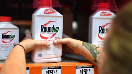 Krebserregend? Das Monsanto-Produkt Roundup bei einem Einzelhändler in Kalifornien im Juli 2018
