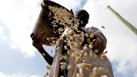 Ein ortsansässiger Müller mit seinem Mais, Kisumu Ndogo bei Nairobi , Kenia, am 6. August 2017.