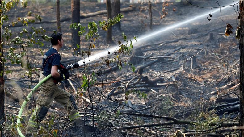 Höchste Alarmstufe: Waldbrände in Brandenburg und Berlin – A10 gesperrt