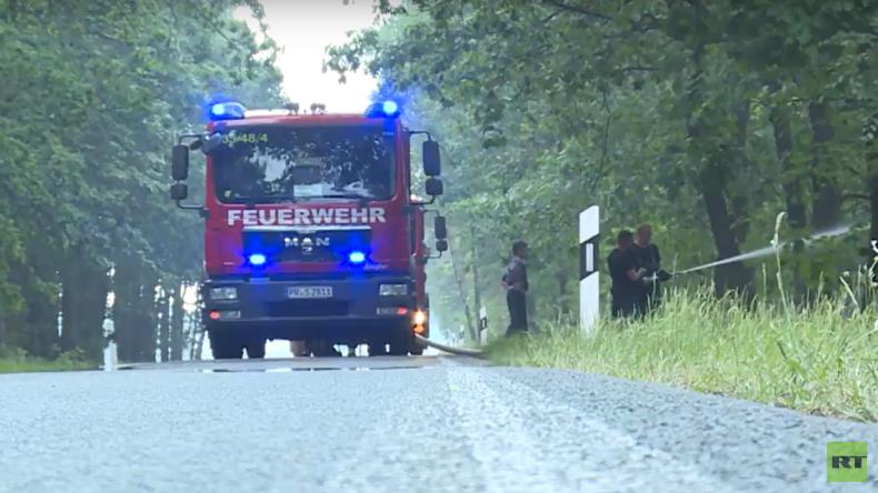 800 Hektar in Flammen – riesiger Waldbrand in Brandenburg