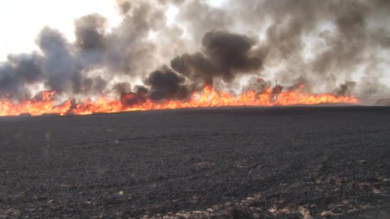Syrien: Brände vernichten große landwirtschaftliche Nutzflächen – Ölanlagen gefährdet