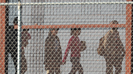 Migranten gehen gemeinsam an der US-amerikanischen/mexikanischen Grenzmauer entlang, um sich der US-Grenzkontrolle zu stellen, 04. Juni 2019, El Paso, Texas.