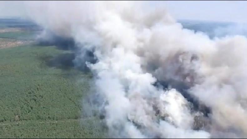 Waldbrand in Mecklenburg flammt auf – mehrere Dörfer evakuiert