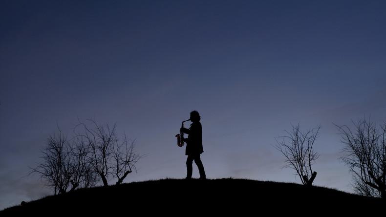 Eine kleine Kuhmusik: Saxophon-Spieler begeistert Rinderherde und Twitter-Nutzer gleichermaßen